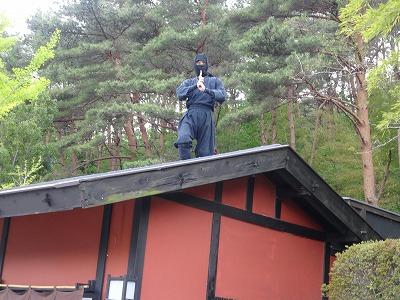 屋根 忍者