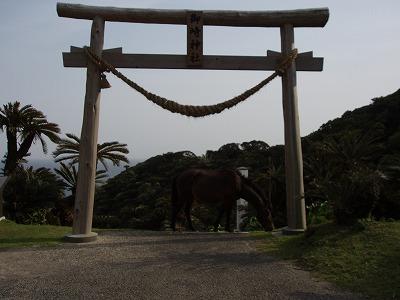 都井岬 神社