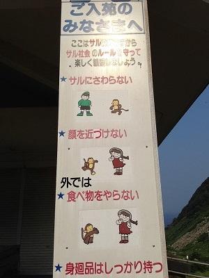 波勝崎苑 猿