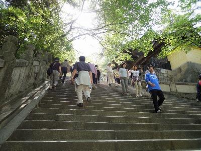 金毘羅山 石段